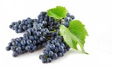 Title:Grapes berries branch-fruit food wallpaper Views:1261
