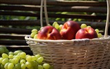 Title:Nectarines and grapes-fruit food wallpaper Views:1133