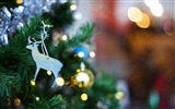 Title:Christmas tree toy-Holiday Theme HD Wallpapers Views:1006