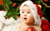 Title:2016 Christmas Characters Theme HD Wallpaper Views:5366