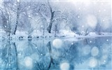 Title:Beautiful winter lake snow ice-Landscapes HD Wallpaper Views:1960