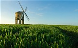 Title:Field Windmill Summer-Scenery HD Desktop Wallpaper Views:1314