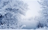 Title:Winter Grass White River Snow-Landscapes HD Wallpaper Views:1412