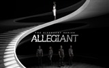 Title:The divergent series allegiant-2016 Movie High Quality Wallpaper Views:1240