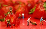Title:Fruits Miniature Delicious Strawberries-Macro photo HD Wallpaper Views:1014