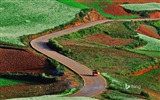 Title:Rolling hills Dongchuan China-2016 Bing Desktop Wallpaper Views:1223
