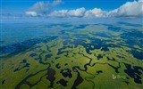 Title:Aerial view of Everglades National Park in Florida-2016 Bing Desktop Wallpaper Views:2310