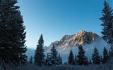 Title:Foggy morning at Bow Lake-National Geographic Photo Wallpaper Views:1501