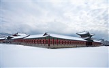 Title:Gyeongbokgung palace winter-High Quality Wallpaper Views:1309