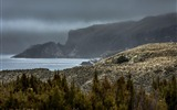 Title:Mist over Campbell Island-National Geographic Photo Wallpaper Views:1787