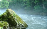 Title:Mountain river stone moss-Nature High Quality Wallpaper Views:1355