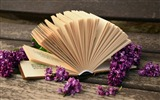 Title:Open book macro-High Quality Wallpaper Views:1118