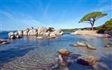 Title:Palombaggia beach sunny-Nature High Quality Wallpaper Views:1959