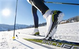Title:Skis snow-Sports Poster Wallpaper Views:1294