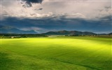 Title:Grass sky clouds light-Nature Scenery HD Wallpaper Views:1680