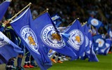 Title:Leicester City Football Club Champions HD Wallpaper 01 Views:1803