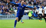Title:Leicester City Football Club Champions HD Wallpaper 13 Views:1183
