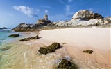 Title:Reeves coast rocks beach-Nature Scenery HD Wallpaper Views:1445