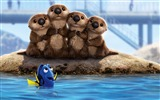 Title:Finding Dory Sea Lions-Movies Posters HD Wallpaper Views:1376