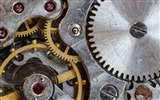 Title:Focus gears motor gear-High Quality HD Wallpaper Views:927