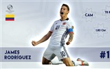 Title:James Rodriguez-Copa America 2016 Player Wallpaper Views:1226