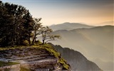 Title:Morning cliff mountain rock grass fog-Scenery High Quality Wallpaper Views:764