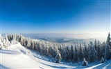 Title:Mountains forest snow trees slope-Scenery High Quality Wallpaper Views:826