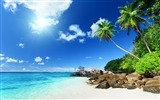 Title:Palm trees paradise beach-Summer Scenery HD Wallpaper Views:3731
