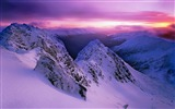 Title:Purple mountain peaks snow-Scenery High Quality Wallpaper Views:1104