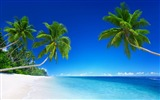 Title:Hot summer sea beach scenery photo wallpaper Views:3802