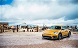 Title:2016 Volkswagen Beetle Dune Auto HD Wallpaper 02 Views:619