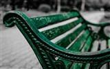 Title:Green bench park-2016 High Quality Wallpaper Views:1393