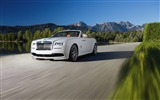Title:2016 Spofec Rolls-Royce Dawn Convertible HD Wallpaper Views:1261