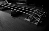 Title:Bass guitars macro-2016 Music HD Wallpaper Views:626