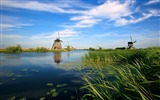 Title:Holland windmill river blue sky-Scenery HD Wallpaper Views:1003