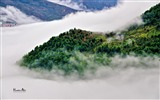 Title:Iran Mountain Forest Mist Village-Nature High Quality Wallpaper Views:446