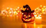Title:2016 Happy Halloween Holiday HD Wallpaper 07 Views:647