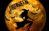 Title:2016 Happy Halloween Holiday HD Wallpaper 08 Views:674