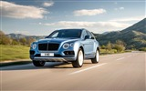 Title:2017 Bentley Bentayga Diesel HD Wallpaper 01 Views:533