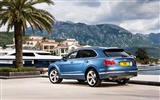 Title:2017 Bentley Bentayga Diesel HD Wallpaper 14 Views:565