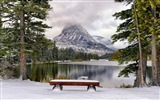 Title:Bench by the lake in the winter-Windows 10 HD Wallpapers Views:1021