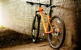 Title:Bicycle close up-2016 High Quality HD Wallpaper Views:1232