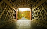 Title:Delaware Ashland Bridge in New Castle-2016 Bing Desktop Wallpaper Views:674