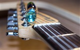 Title:Electric fretboard strings music-2016 High Quality HD Wallpaper Views:564