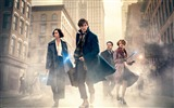 Title:Fantastic beasts and where to find them-2016 Movie Poster Wallpaper Views:821