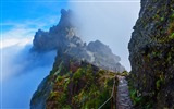 Title:Portugal Mountain trail in Madeira-2016 Bing Desktop Wallpaper Views:808