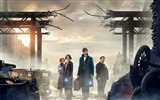 Title:Fantastic beasts and where to find them-2016 Movie HD Wallpapers Views:814