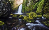 Title:Green moss waterfall-Nature High Quality Wallpaper Views:665