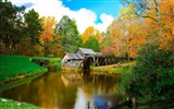 Title:Mill on the River and colorful autumn forest-Nature High Quality Wallpapers Views:649