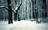 Title:Park bench winter city-2016 Nature HD Wallpaper Views:805